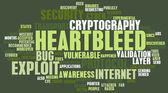 Heartbleed Exploit — Stock Photo
