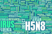 H5N8 Concept — Stock Photo