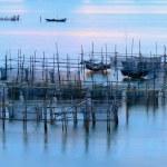Sea fish farm — Stock Photo