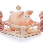 Protect Your savings — Stock Photo