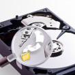 Searching files inside the Hard Disk — Stock Photo