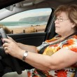 Senior WomDriving Car — Stock Photo #25871989