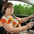 Senior WomDriving Car — Stock Photo #26851317