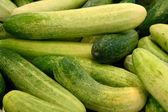 Komkommers — Stockfoto
