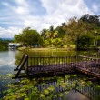 Nature landscape — Stockfoto