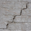Brick wall with crack — Stockfoto #30361463