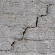 Brick wall with crack — 图库照片 #30361463