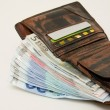 Fat wallet — Stock Photo