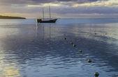 Boat in Mauritius — Stock Photo