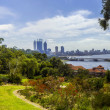 Perth city from Kings park — Stock Photo