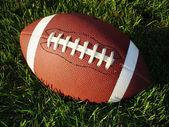 在高高的草地上足球 — 图库照片