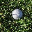 Golf Ball in Grass — Stock Photo #24057393