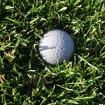 Golf Ball in Grass — Stock Photo #24057393