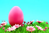 Pink easter egg on meadow with flowers & cyan background — Stock Photo
