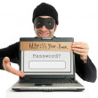 Password thief (phishing) — Stock Photo #23425628