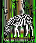Zebra in the forest — Stock Vector