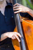 Musician playing double-bass — Stock Photo