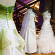 Bride dresses — Stock Photo