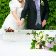 Wedding cake — Stock Photo #24987051