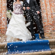 Wedding — Stock Photo #25167783