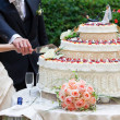 Wedding cake — Stock Photo #27423025