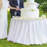 花嫁および新郎結婚式のケーキカット — ストック写真