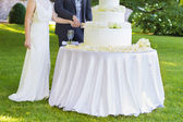 Bride and groom cutting wedding cake — Stock Photo