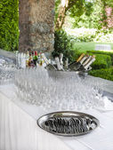 Champagne and glasses — Stock Photo