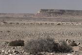 Desierto rocoso — Foto de Stock
