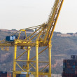 Port cranes — Stock Photo