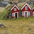 Icelandic houses — Stock Photo #40199727