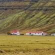 Icelandic houses — Stock Photo