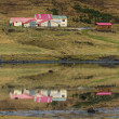 Icelandic houses — Stock Photo #40205743