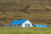 Maisons islandaises — Photo
