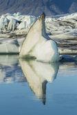 Gelo de geleira — Foto Stock