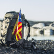Stock Photo: Cataloniflag