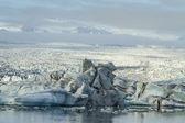 Icelandic Ice — Stock Photo