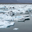 Glacier lagoon — Stock Photo #41350271