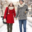 Young couple on winter day — Stock Photo #23672237