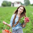 Stock Photo: Woman with basket of harvested vegetables