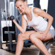 Woman Lifting Dumbbells — Stock Photo #27267661