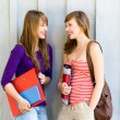 Young women carrying books — Stock Photo #28043899