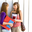 Stock Photo: Young women carrying books