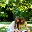 Girls studying outdoors — Stockfoto