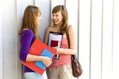 Unga kvinnor bära böcker — Stockfoto