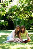 Mädchen im freien zu studieren — Stockfoto