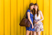 Beautiful young women — Stock Photo
