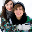 Winter couple — Foto Stock #28195437