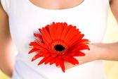 Jonge vrouw bedrijf bloem — Stockfoto