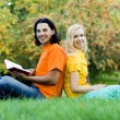 Students sitting back to back on grass — Stock Photo #28270675
